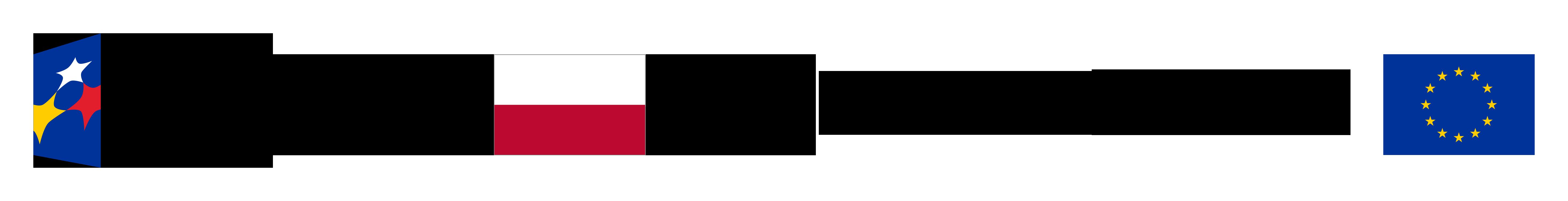FE_POWER_poziom_pl-1_rgb